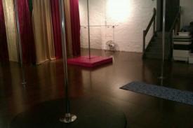 pink kitten pole studio